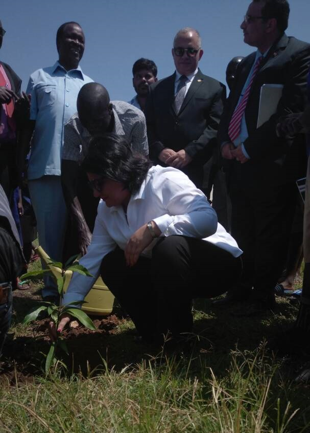 Egyptian Ambassador planting a Tree